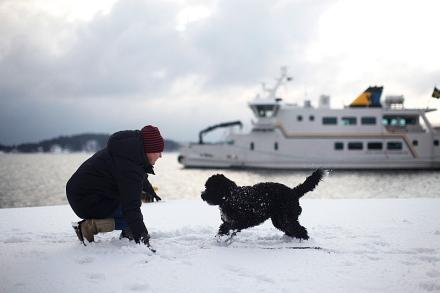 Zelda och jag leker i hamnen i Vaxholm förra vintern. Snart busar hon nog igen...